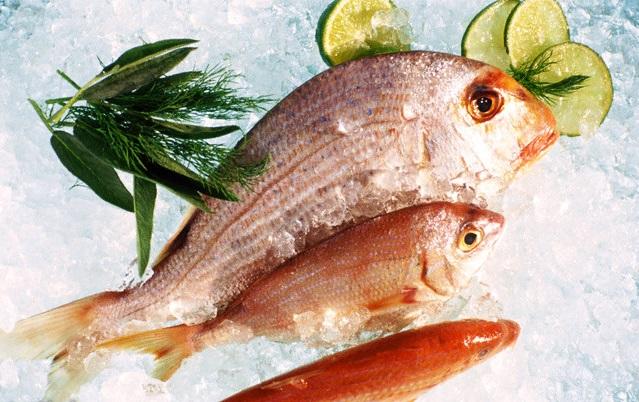 مصرف ماهی بصورت منجمد شده