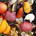 آیا از مصارف مختلف پوست میوه اطلاعی دارید؟!