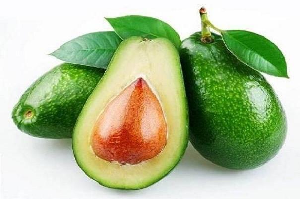 خاصیت میوه آووکادو