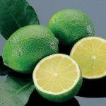 خواص درمانی لیموترش چیست؟!