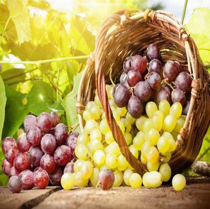 فایده های انگور