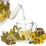 با فواید بی نظیر گیاه رازیانه آشنا شوید!
