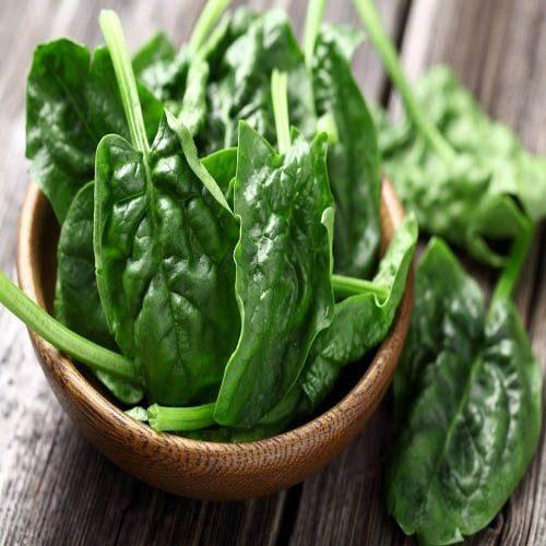 خواص اسفناج یکی از گیاهان پر خاصیت برای سلامتی!