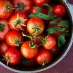 ۱۰ خاصیت شگفت انگیز گوجه فرنگی برای سلامتی!