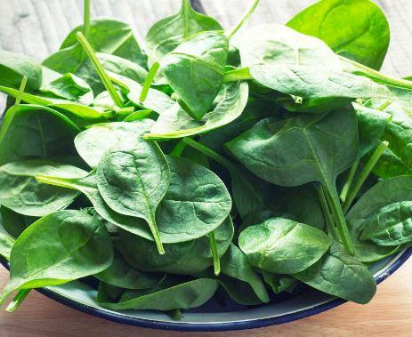 ارزش غذایی اسفناج و خاصیت آن برای سلامتی!