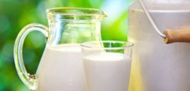 خاصیت های مصرف شیر شتر برای سلامت بدن!