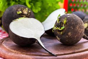 روش مصرف ترب سیاه برای درمان سنگ های صفراوی!