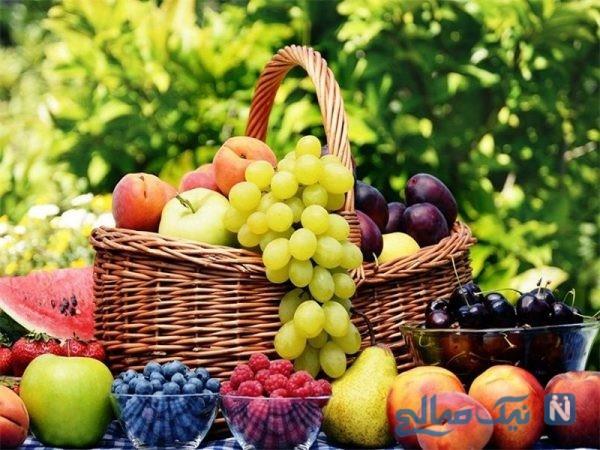 میوه ها در زمستان