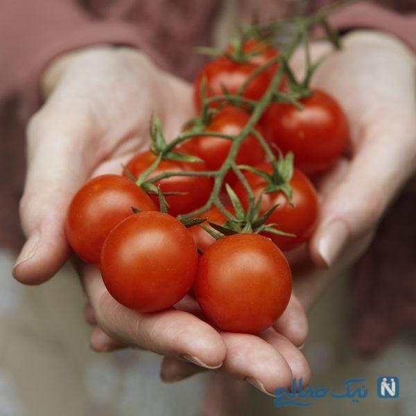 خواص گوجه فرنگی برای کبد چرب