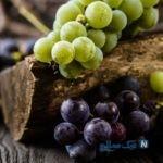 خواص انگور یکی از خارق العاده ترین میوه ها!