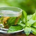 فواید چای سبز با مصرف همزمان با آهن از بین می رود