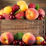 بهترین راه برای تازه ماندن میوه ها و جلو گیری از خراب شدنشان