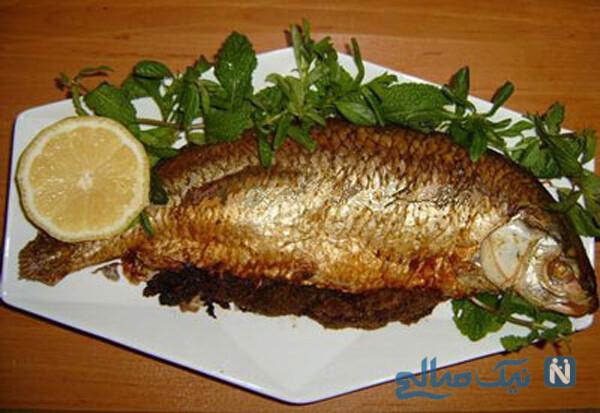 ماهی های چرب مانند ماهی آزاد
