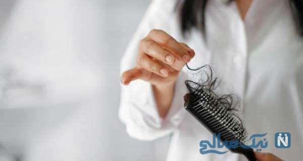 ۸ خوراکی مفید برای سلامت مو