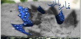 حاشیه های عکس عجیب مردی که با بره اش به نماز باران آمد