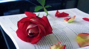پیامک های مهربانی عاشقانه به عشق