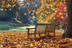 جمله های آرامش بخش برای داشتن زندگی زیبا