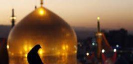 اس ام اس التماس دعا به زائر امام رضا