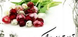 اس ام اس های زیبا برای تبریک تولد