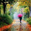 اس ام اس روزهای بارانی عاشقانه و جدید