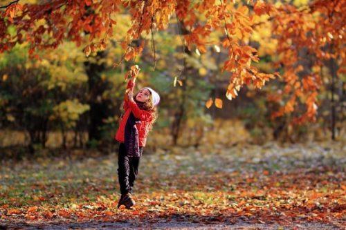 اس ام اس پاییزی عاشقانه