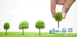 اس ام اس و پیامک روز درختکاری