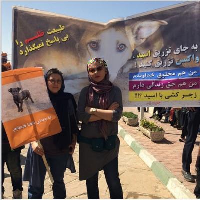 حضور چکامه چمن ماه در تجمع اعتراضی ضد آزار وکشتار سگ ها+عکس