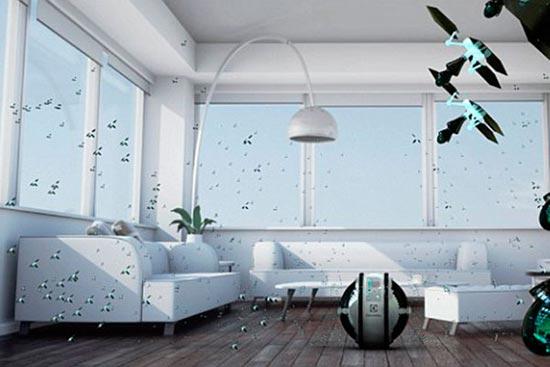 وقتی حشرات خانهتان را تمیز میکنند +عکس