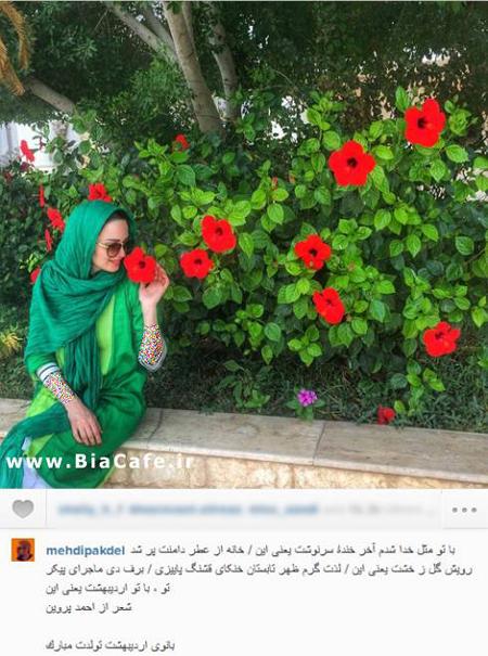 مهدی پاکدل تولد همسرش بهنوش طباطبایی را تبریک گفت!+عکس