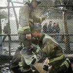 همدردی هنرمندان مشهور کشورمان با حادثه تلخ آتش سوزی پلاسکو!+تصاویر