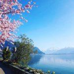 عکسهایی از سفر آزاده نامداری به سوئیس!