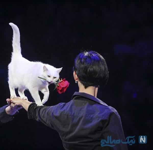 دیدنی های جذاب روز – دوشنبه ۱۵ بهمن! از چالش شلوار یخزده تا سیرک ملی اوکراین