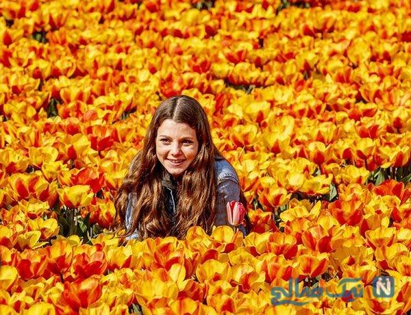 دیدنی های جذاب روز – سه شنبه ۲۰ فروردین! از مزرعه گل لاله در هلند تا مزرعهای در روستوف