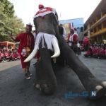 دیدنی های جذاب روز – سه شنبه ۳ دی! از جشنواره یخی هاربین چین تا عروسی در صنعا