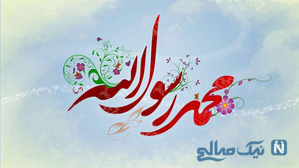 سعید شیخ زاده
