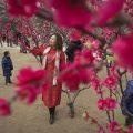 تصاویری از جشن سال نو در چین