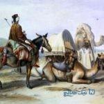 ضرب المثل صد رحمت به دزد سرگردنه