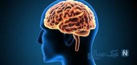 هماهنگی چشم و مغز شما با حل این تست مشخص می شود