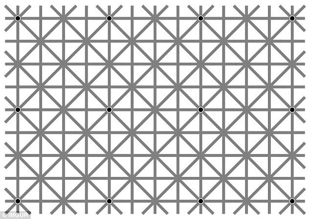 معمای سر در گم کننده تعداد نقاط سیاه +تصویر