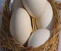 معمای حداقل تعداد تخم مرغ های زن روستائی