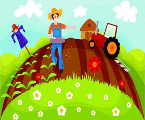 معمای کشاورز نمونه
