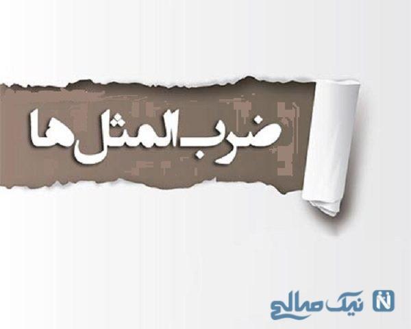 ضرب المثل های ایرانی با حرف د