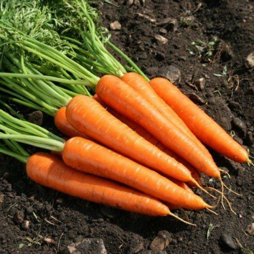 تاثیر هویج بر زیبایی