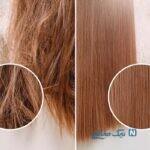 مهمترین اصول نگهداری از مو در طب سنتی