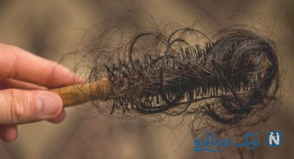 موهای پرپشت با طب سنتی