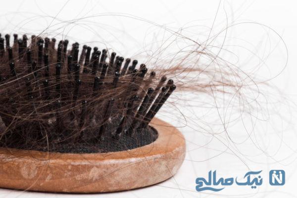اصطلاح فولیکول مو چیست؟