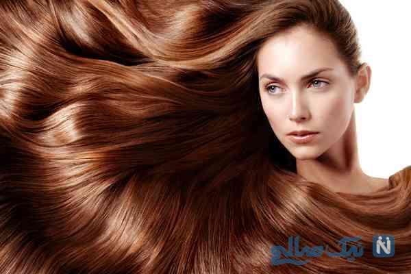 حشره ای که باعث پر پشت شدن و تقویت مو می شود!