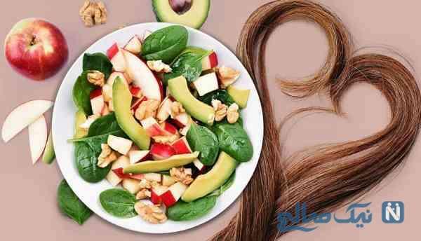 مواد غذایی برای سلامت مو