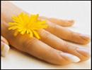 موادغذایی مفید برای سلامت پوست، مو و ناخن