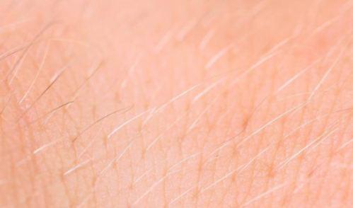 نازک شدن موهای سر و بدن با چه عواملی پدید می آیند؟!